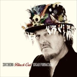 cover-black-cat-zucchero-b